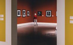 Montaje De Exposiciones Y La Manera Correcta De Hacerlo